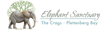 Elephant Sanctuary plett top